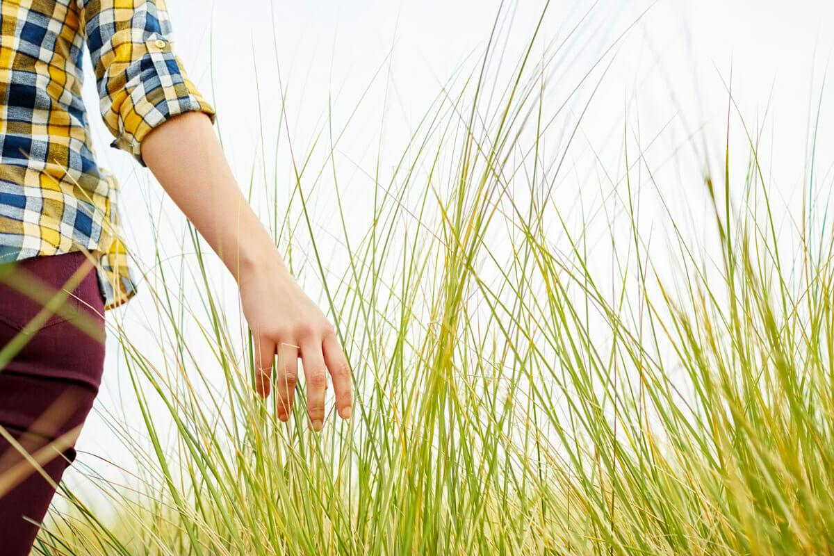woman walking through tall green grass